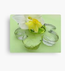 Daffodils, and Glass Daisy  Canvas Print