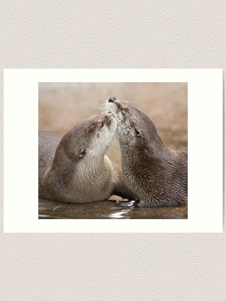 Alternate view of Otter kisses Art Print