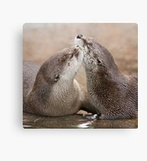 Otter kisses Canvas Print