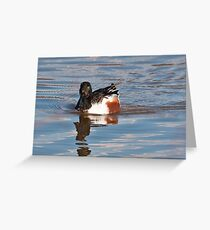 Shoveler Greeting Card