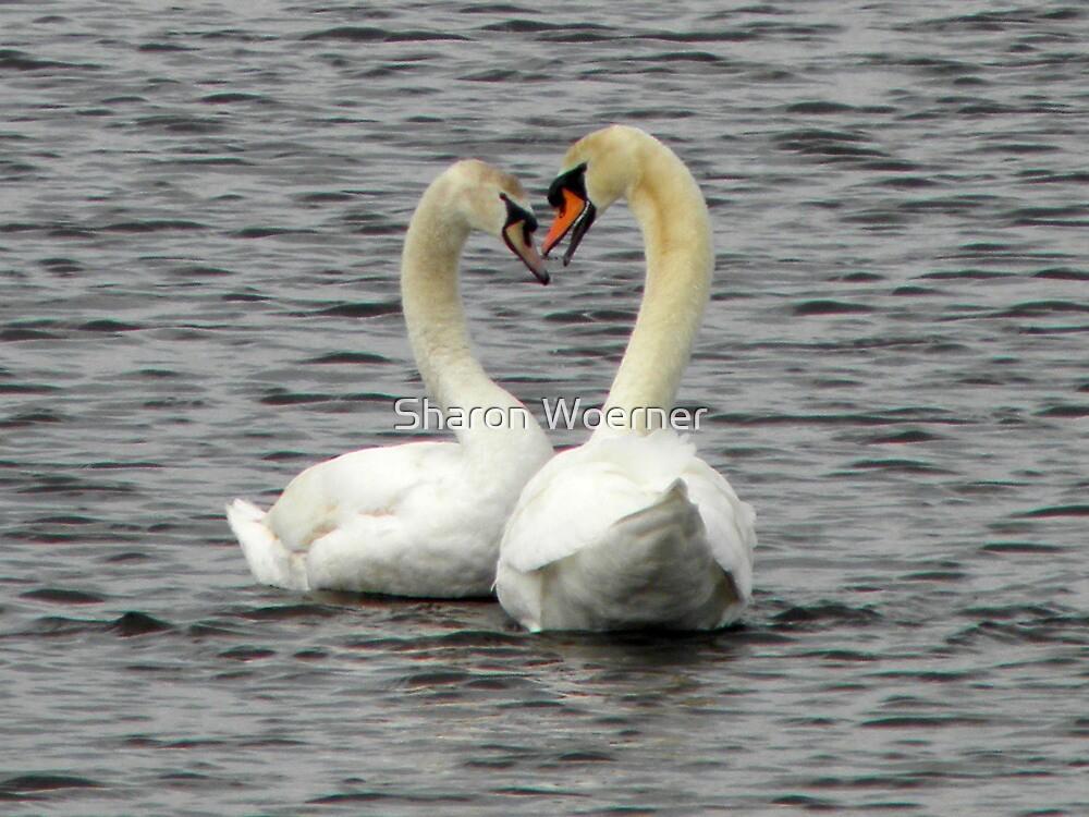 Spring Love by Sharon Woerner