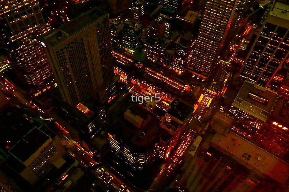 Sydney Nights by tiger5