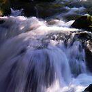 Tumwater Falls #1 by Lady  Dezine