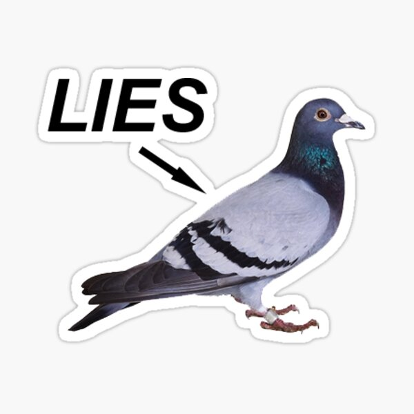 Bird is a Lie Sticker