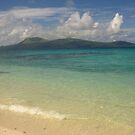 vanuatu - seascape by Rosalinde Jewell