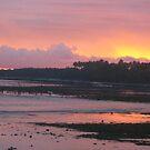 vanuatu - sunset by Rosalinde Jewell