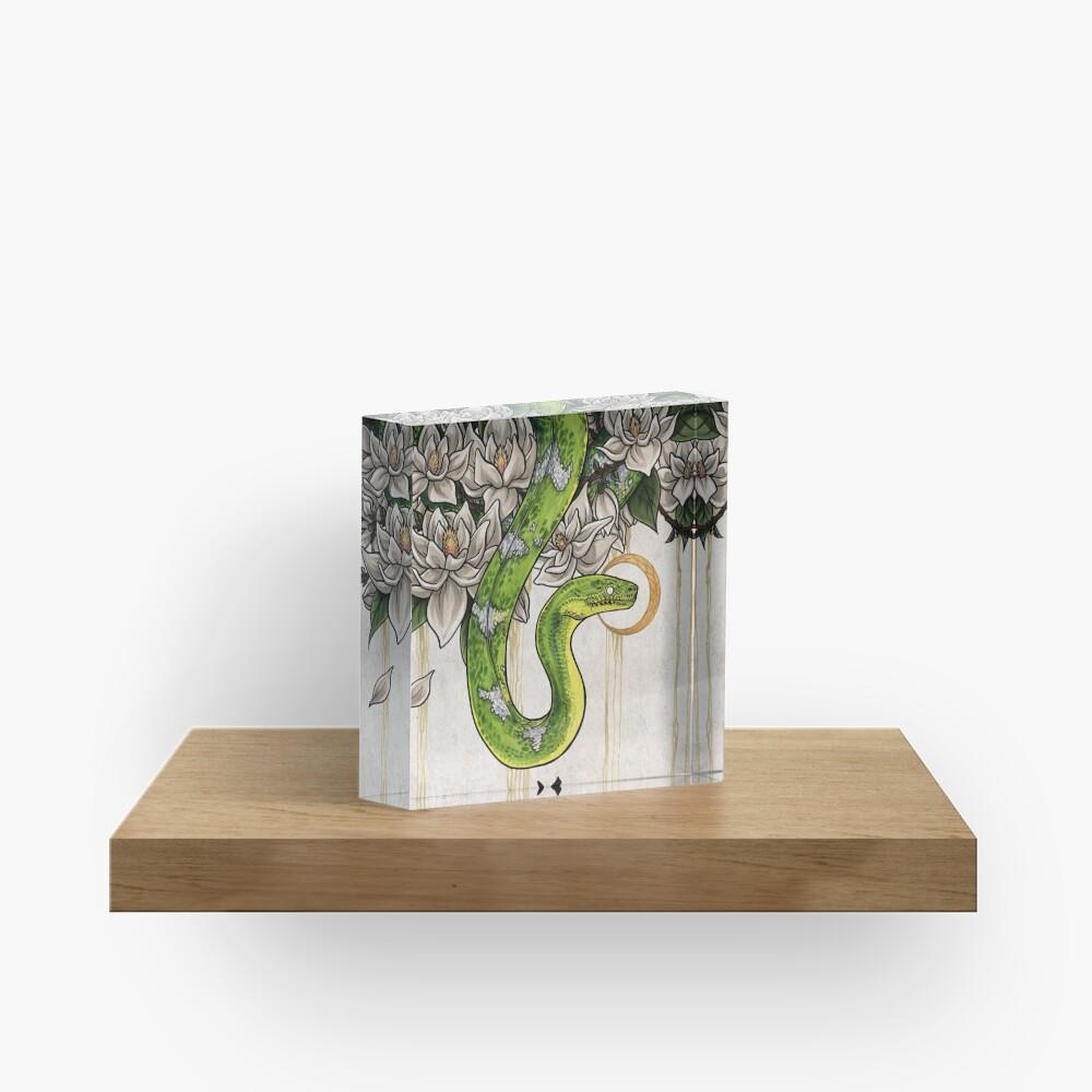 Snake Acrylic Block