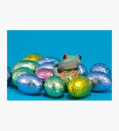 Easter frog Photographic Print