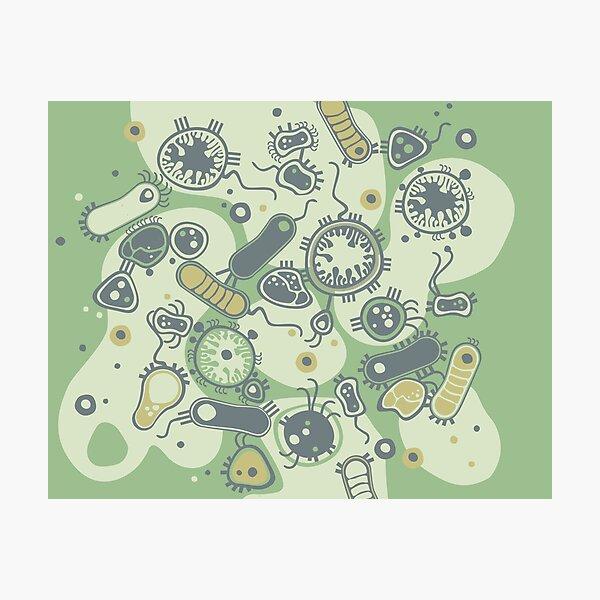 Eukaryote (grün) Fotodruck