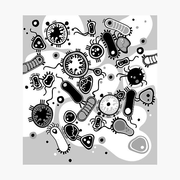 Eukaryote (schwarz/weiß) Fotodruck