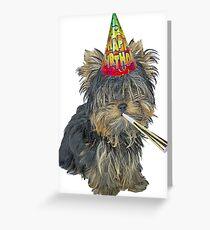 Yorkshire Terrier Birthday Greeting Card