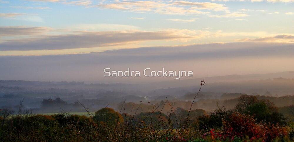 Rolling Mist by Sandra Cockayne