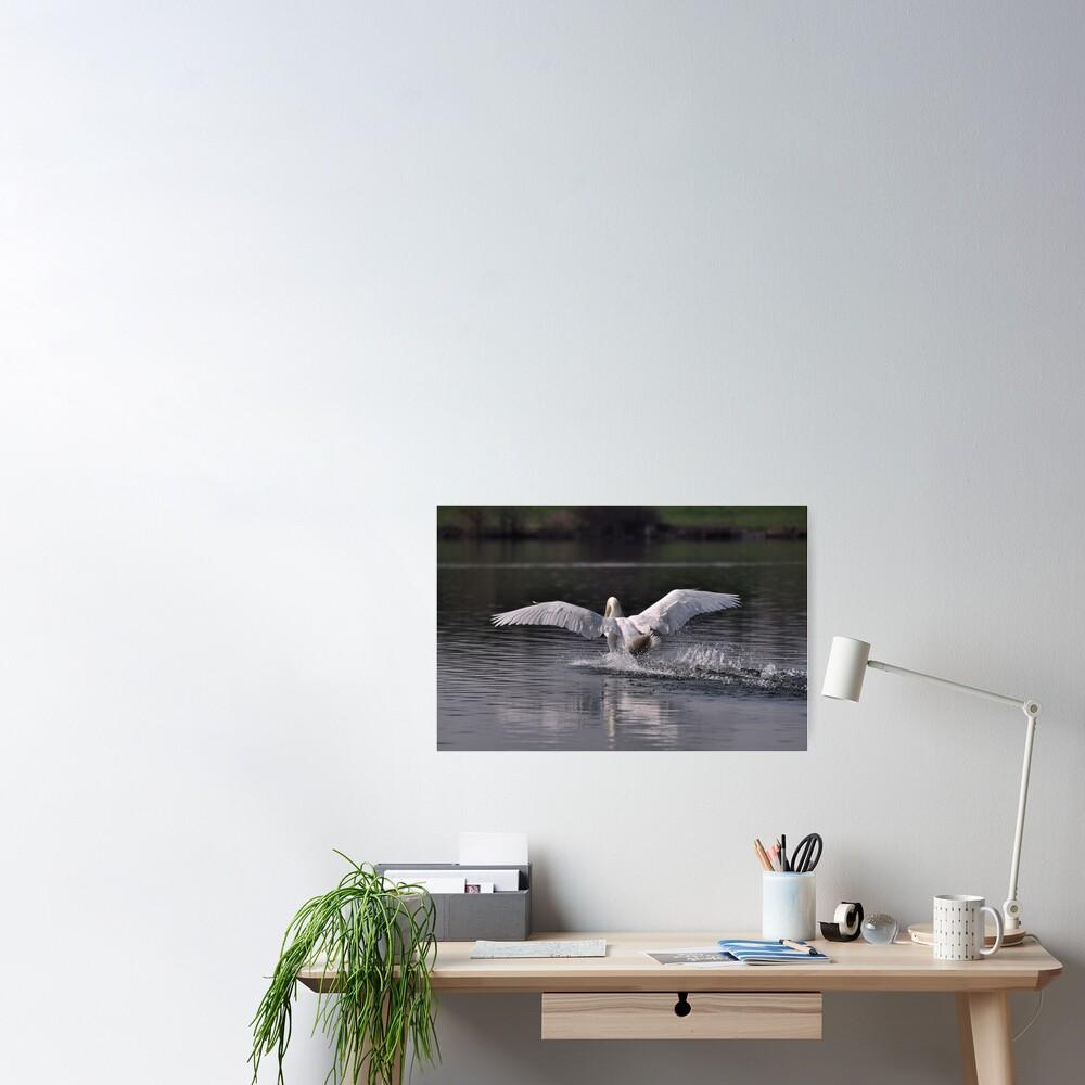 Swan: Landing Poster