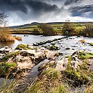 Beezley Stepping Stones by Stephen Knowles