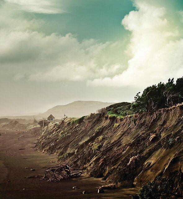 Muriwai Beach Landscape - New Zealand by Cubagallery
