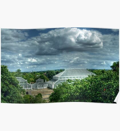 Temperate House Kew Gardens From Treetop Walkway Poster