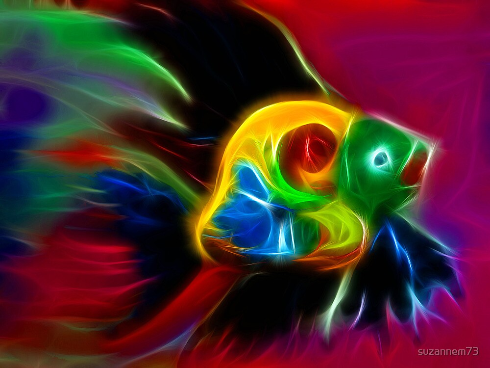 Rainbow Fish by suzannem73