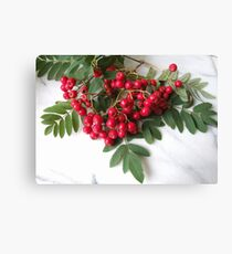 The Rowan Canvas Print