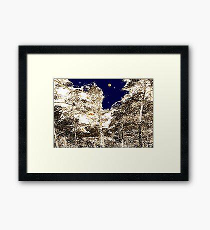 Cedars at Midnight Framed Print