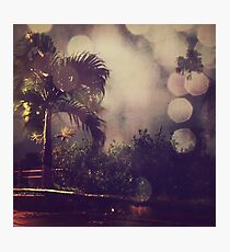 Palm tree and the night Photographic Print