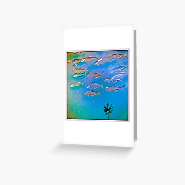 Flight of Fish Greeting Card