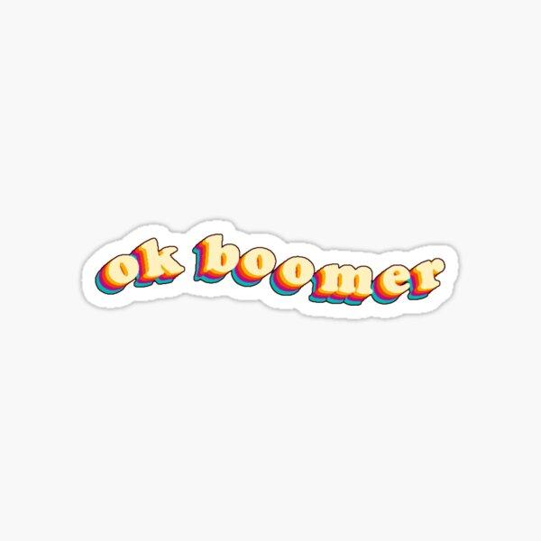 ok boomer - retro aesthetic Sticker