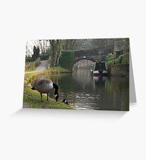 Quack Quack Greeting Card