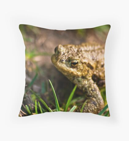Toad of Toad Hall Throw Pillow