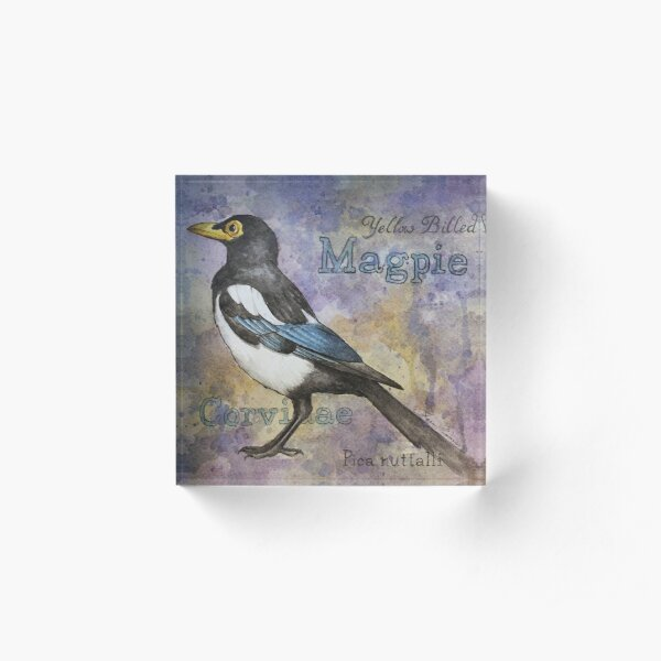 Yellow Billed Magpie Watercolor Acrylic Block