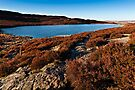 Harbottle, Coquetdale. Northumberland National Park. UK  by David Lewins