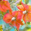 Clematis - orange pink turquoise by Tummy Rubb Studio