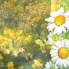 Daisies and sunny field collage by Tummy Rubb Studio