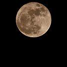 Clair de lune by Elisabeth van Eyken