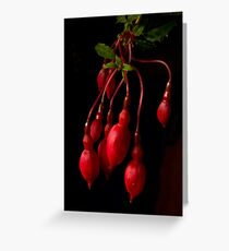 red on black Greeting Card