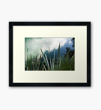 Reflections in a pool - New Zealand Framed Print