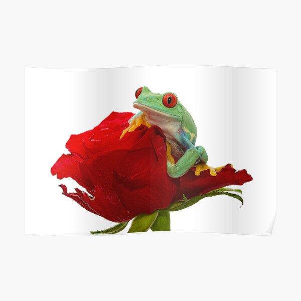 Valentine Frog Poster