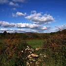 Brent Moor by moor2sea