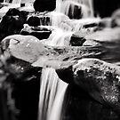 Virginia Falls by Nikki Smith