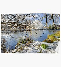 Wintry River at Newton Road Park Poster