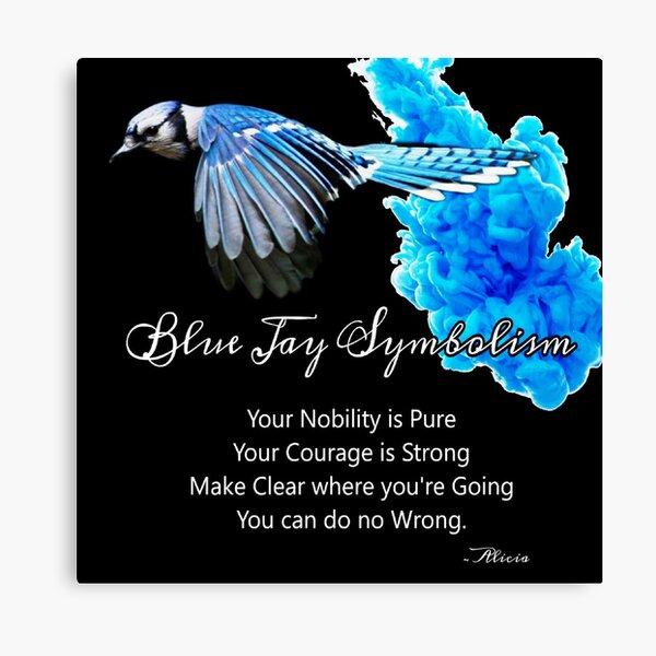 Blue Jay Symbolism Canvas Print