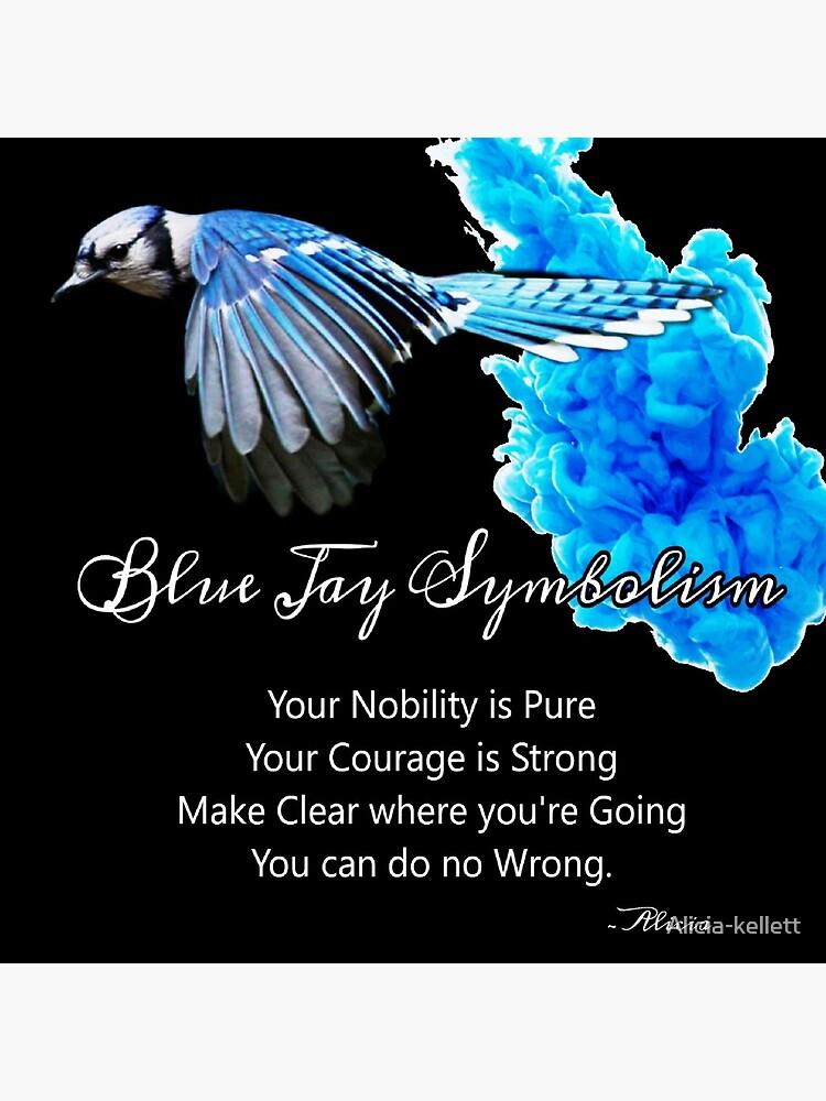 Blue Jay Symbolism by Alicia-kellett