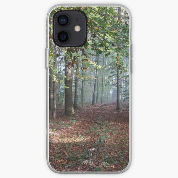 Autumn forest iPhone Soft Case