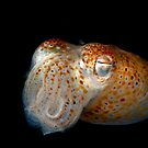 Underwater Alien by MattTworkowski