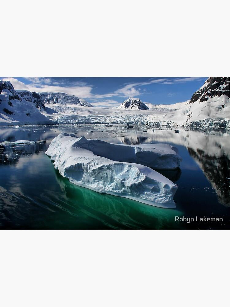 Beautiful Antarctica by Rivergirl