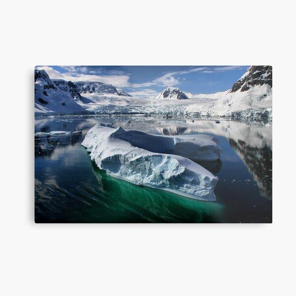 Beautiful Antarctica Metal Print