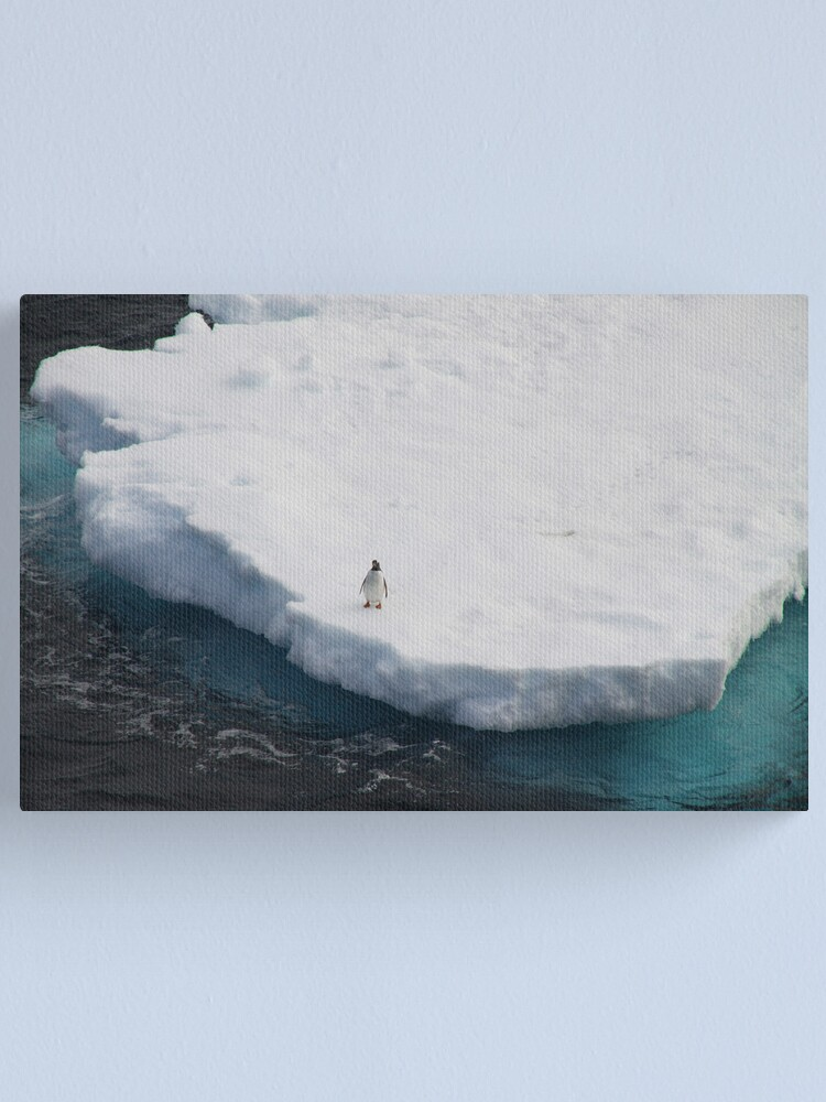 Alternate view of The Lone Penguin Canvas Print