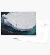 The Lone Penguin Postcards