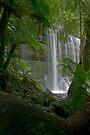 Russel Falls by mspfoto