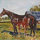 Horses by CaDra