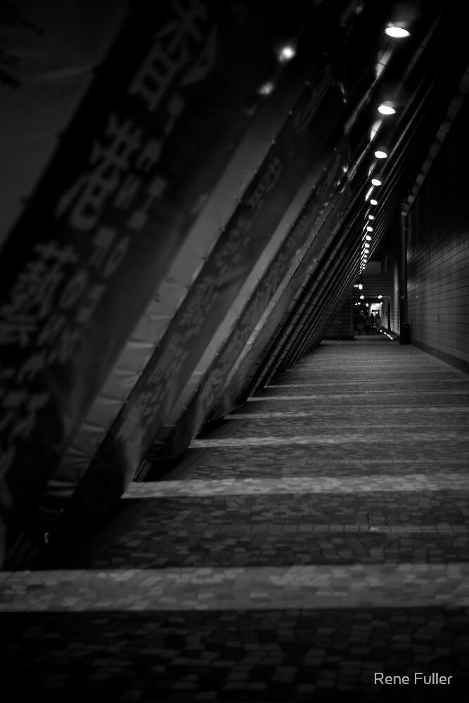 Follow the lights... by Rene Fuller